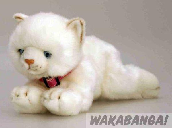 Gato de peluche color blanco Misty | RymanRyman