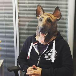 Máscara perro Pastor Alemán