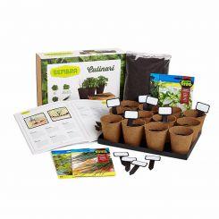 Kit cultivar hierbas para infusiones