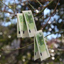 Paquete de pañuelos de 100 euros