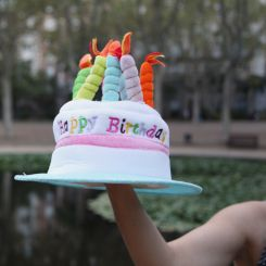 Sombrero tarta de cumpleaños