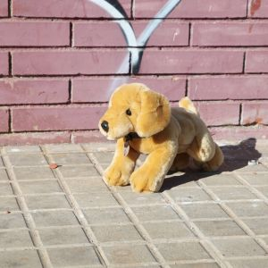 Perro Labrador de peluche Monty